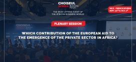 Which contribution of the European aid to the emergence of the private sector in Africa?