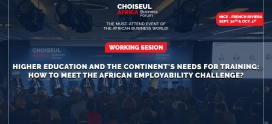 Higher education and the continent's needs for training: How to meet the African employability challenge?